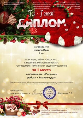 Ty-Geniy_diploma_New_Year_2018